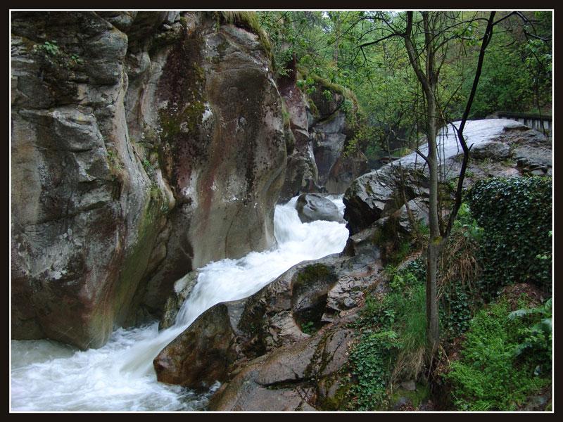 Река Чавча