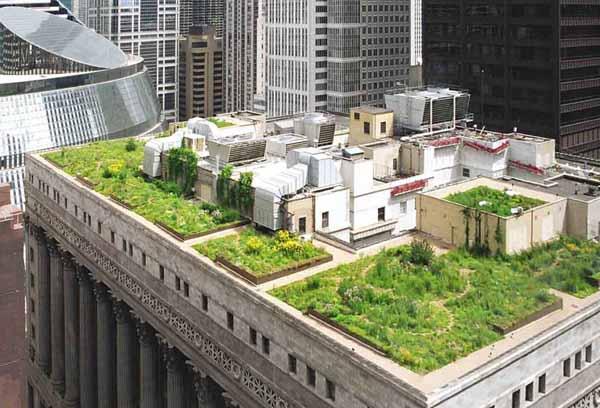 Градина на покрива - идея